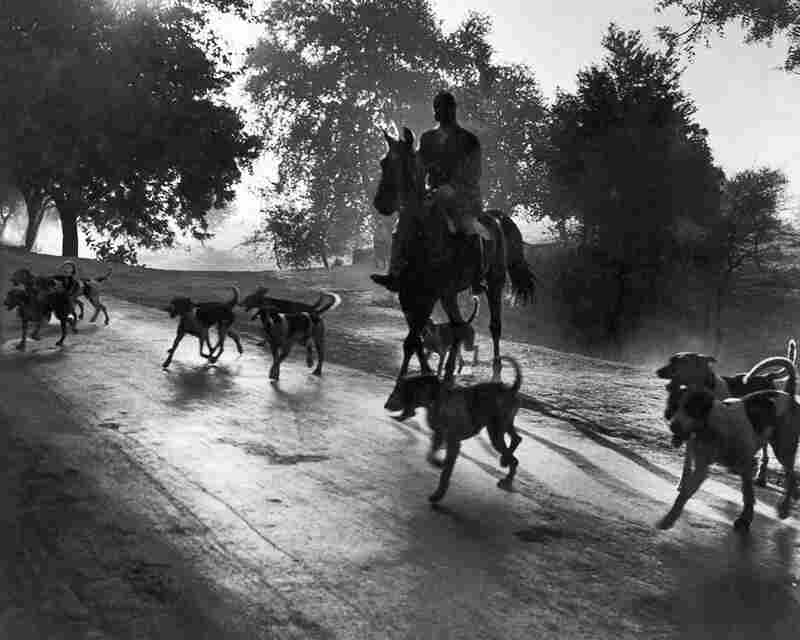 """Col. Sahi leads a misty morning fox hunt in Delhi in the early 1940s. This was one of Vyarawalla's favorite images. She recalled in the book """"Camera Chronicles of Homai Vyarawalla"""" that she was nearly mauled by huge hunting dogs that day."""