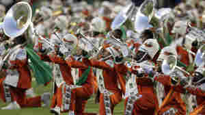 New Hazing Allegations At Florida A&M University