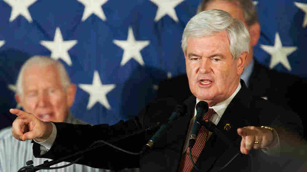 Republican presidential candidate Newt Gingrich speaks to supporters in Sarasota, Fla., on Tuesday.