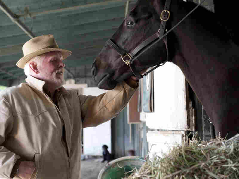 Nick Nolte plays a horse owner who spent most of his career working as a horse trainer in Luck.