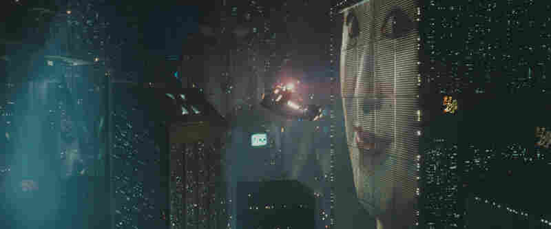 "'Sheep,' Shorn: Ridley Scott's Blade Runner, released in 1982, was based on the Philip K. Dick story ""Do Androids Dream of Electric Sheep?"""