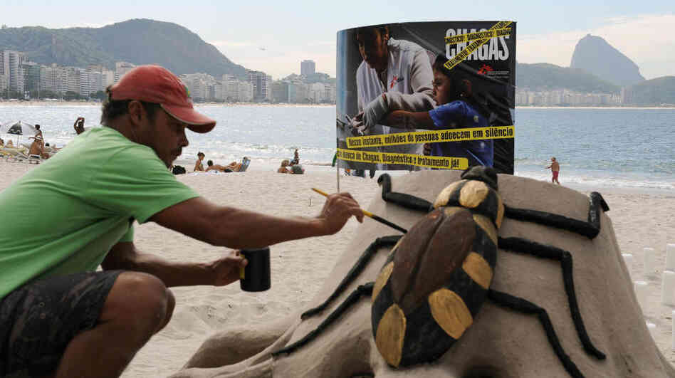 An artist on Rio de Janeiro's Copacabana beach puts the final touches on a sand sculpture of the assassin bug, which spreads Chagas disease. The sculpture was part of an event in 2009 commemorating the 100th anniversary of the discovery of the disease.