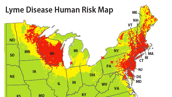 Tick Tally Reveals Lyme Disease Risk Shots Health News NPR