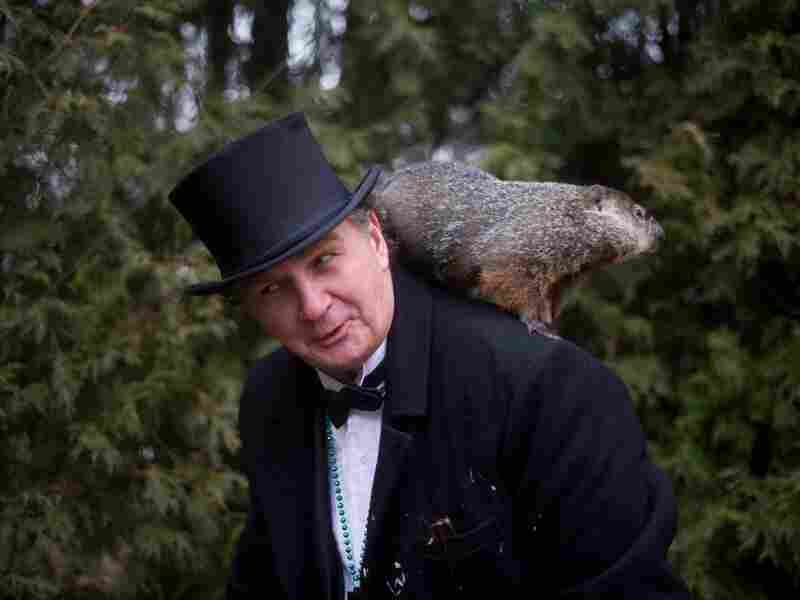 Groundhog handler John Griffiths holds Punxsutawney Phil after he saw his shadow predicting six more weeks of winter during annual Groundhog Day festivities Thursday in Punxsutawney, Pa.