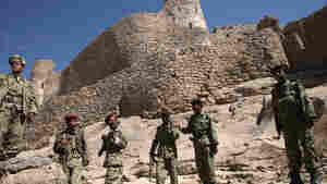 With Al-Qaida's Core Weakened, U.S. Shifts Focus