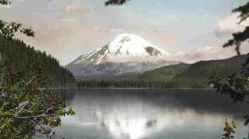 Mt. Saint Helens from Spirit Lake