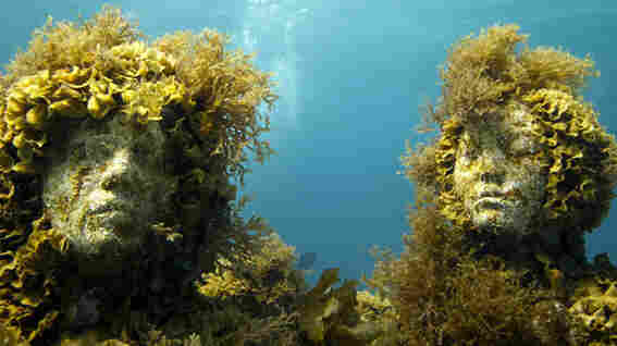 Made from cement meant to host underwater life, La Evolucion Silencia provides a stable place for sea coral to grow.