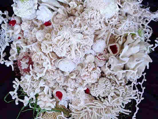 """A new """"White Reef"""" coral reef crochet by Dr. Axt."""