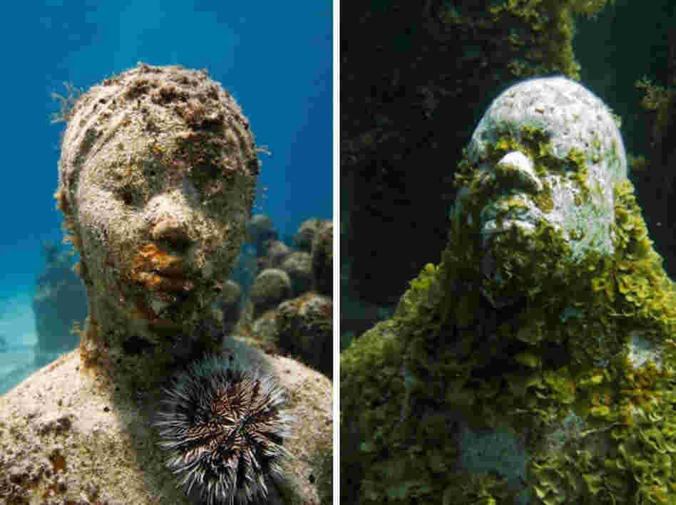 Over time, the sculptures will become completely engulfed in coral.