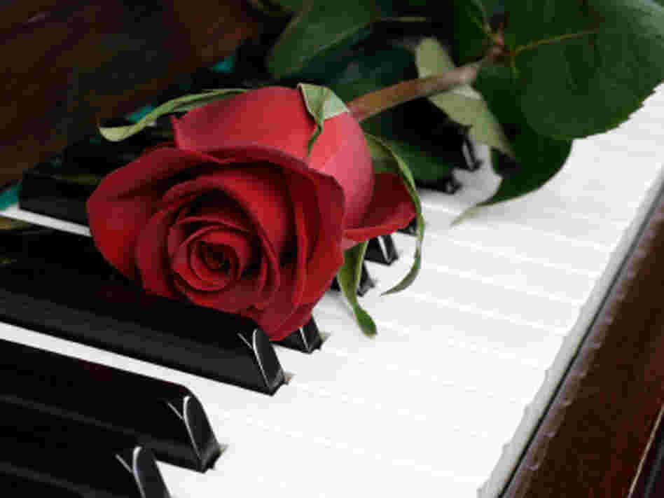A rose sits on a piano, reminding all and sundry of the miseries of Valentine's Day.
