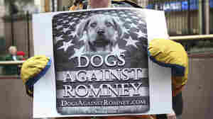 Why Romney's Shaggy Dog Story Won't Die