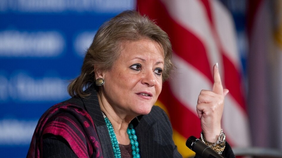Egyptian Planning and International Cooperation Minister Faiza Aboul Naga (shown here in Washington, D.C., last April) has repeatedly warned Egyptians about the alleged danger foreigners pose to their country. She is the driving force behind recent efforts to prosecute 43 people, including American and other foreign democracy activists, for operating illegally in Egypt.