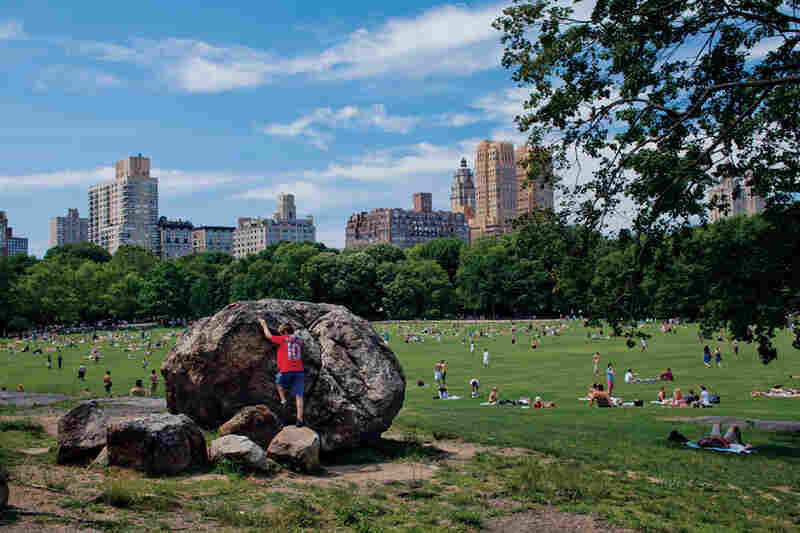 Receding glaciers left these rocks behind in what is now New York City's Central Park. Frederick Law Olmsted, the park's co-designer, in some cases arranged the boulders, known as erratics, into what he considered poetic tableaux.