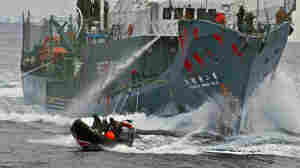 The Japanese whaling vessel Yushin Maru No. 2 shoots its water cannons at a Sea Shepherd craft during an altercation on Feb. 12, 2012. The photo was released by the Sea Shepherd Conservation Society.