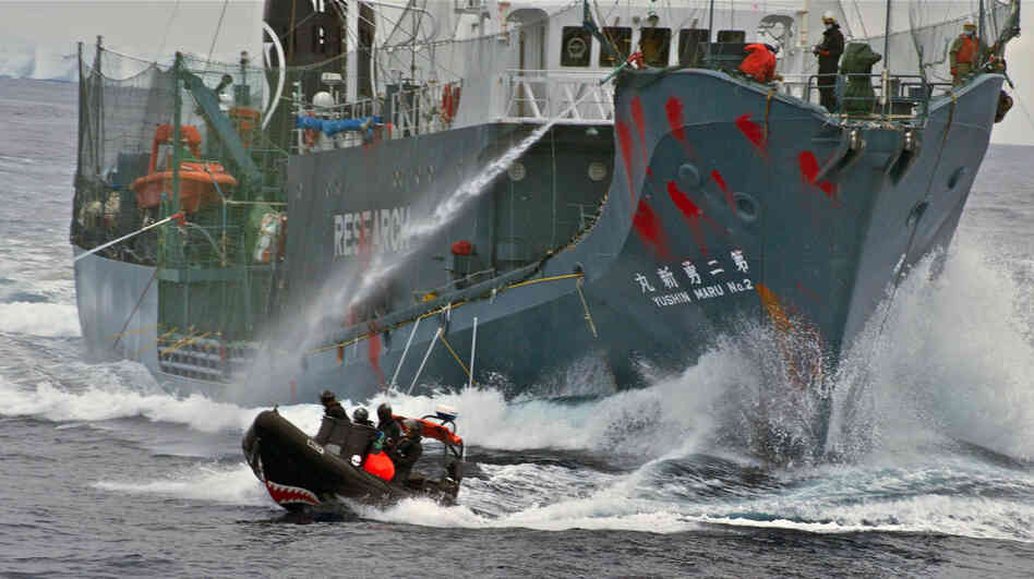The Japanese whaling vessel Yushin Maru No. 2 shoots its water cannons at a Sea Shepherd craft during an altercation on Feb.