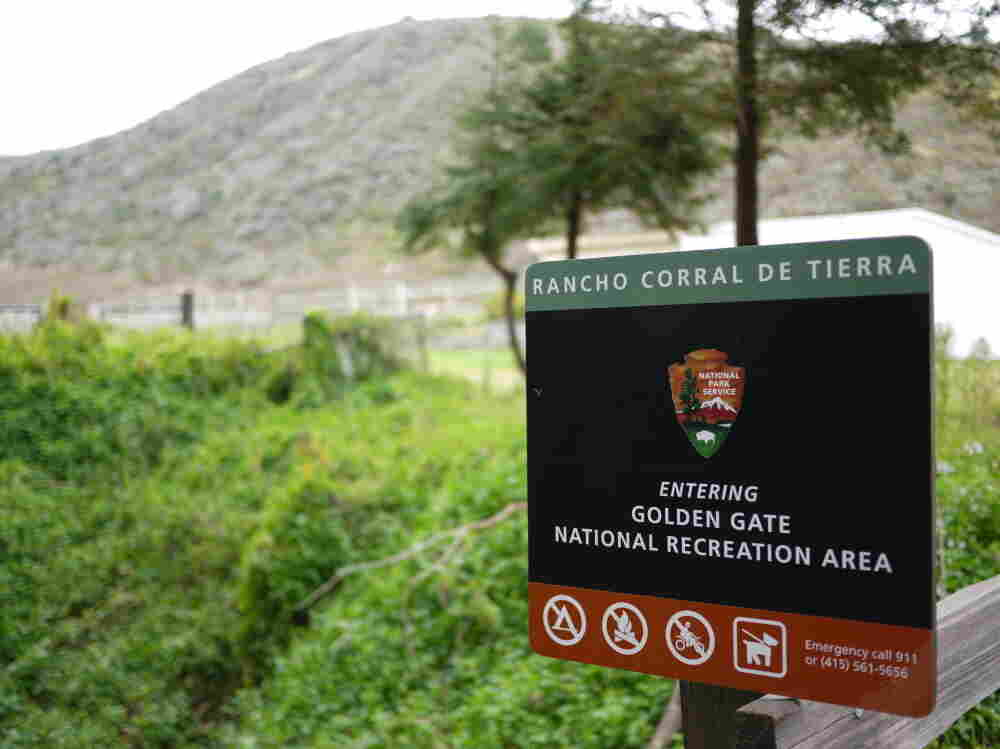 Rancho Corral de Tierra Park in Northern California recently became part of the National Parks System. Now dogs are required to be on leash, angering some community members.