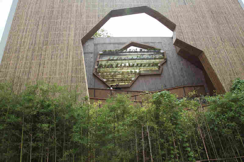 "The Pritzker Jury citation said Wang is ""capable of creating buildings on an intimate scale,"" as demonstrated above in his Ningbo Tengtou Pavilion at the Shanghai Expo."