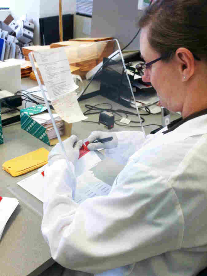 A Washington State Patrol crime lab technician opens DNA sample cards containing cheek swabs sent from jails and prisons. If the state Legislature approves pre-conviction DNA sampling, the number of cards the lab processes could double.