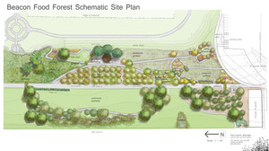 If all goes well in the food forest's 2-acre trial plot, the whole 7-acre park will look something like this.