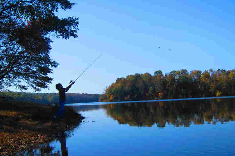 Carolina Fraser, 11: This picture is special to me because it shows one of my favorite places, Green Lane, Pa., and my brother, Perry, fishing, which is one of my favorite things to do.