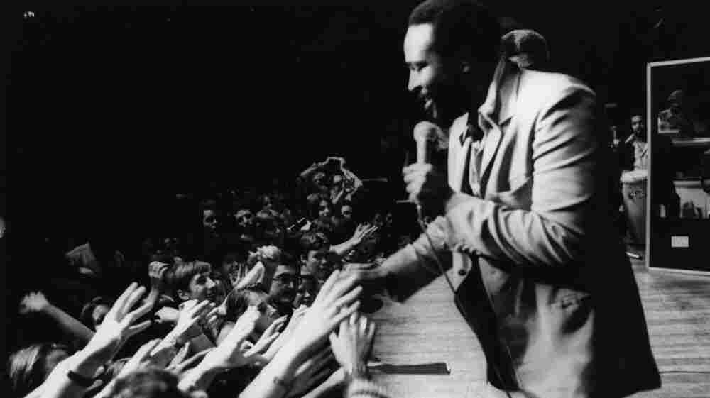 Marvin Gaye in concert at the Royal Albert Hall.