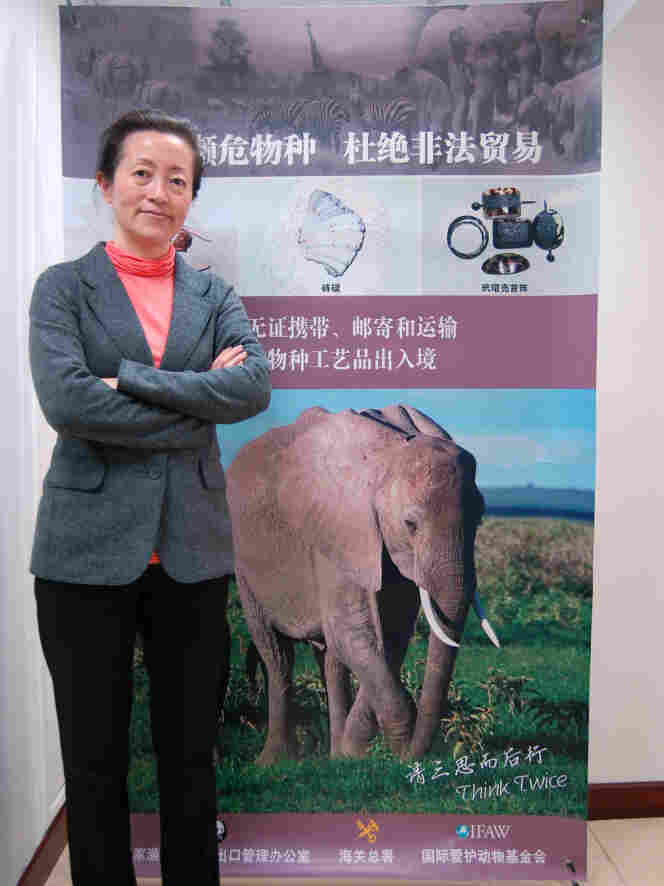 The price for raw elephant tusks in China has tripled in the past year because of growing demand, according to Grace Gabriel, the Asia regional director for the International Fund for Animal Welfare.