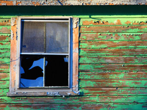 Old windows can be a big source of lead contamination.