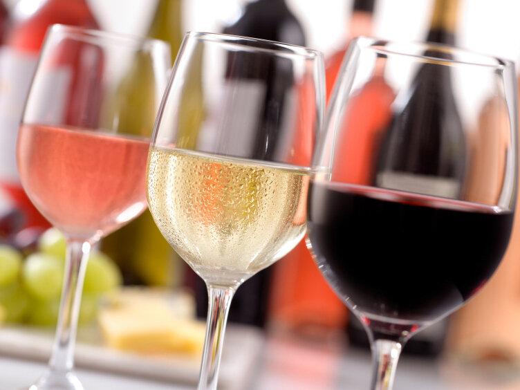 Study: My Understanding of Wines
