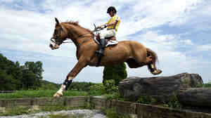 U.S. Olympic Equestrian rider Phillip Dutton jumps with Zeizos in West Grove, Pa., in this 2010 photo. Dozens of horses will fly from America to England for the 2012 Summer Olympics.