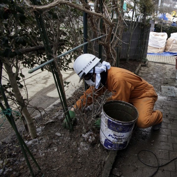 A worker scoops up radiation-contaminated soil in a private garden in Fukushima, Japan, last month. A massive cleanup has begun in towns contaminated by radiation from the Fukushima Dai-ichi nuclear plant.