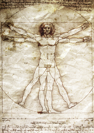 A reproduction of Leonardo da Vinci's drawing of The Vitruvian Man.