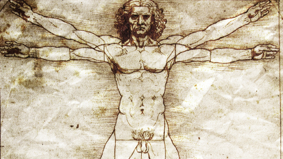 leonardo da vinci in our life Leonardo da vinci was a scientist, mathematician and inventor who developed plans for machines, bridges and even a parachute his sketches of human anatomy made a lasting impression on artists and.
