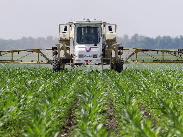 A farmer sprays the weed killer glyphosate across his cornfield in Auburn, Ill.