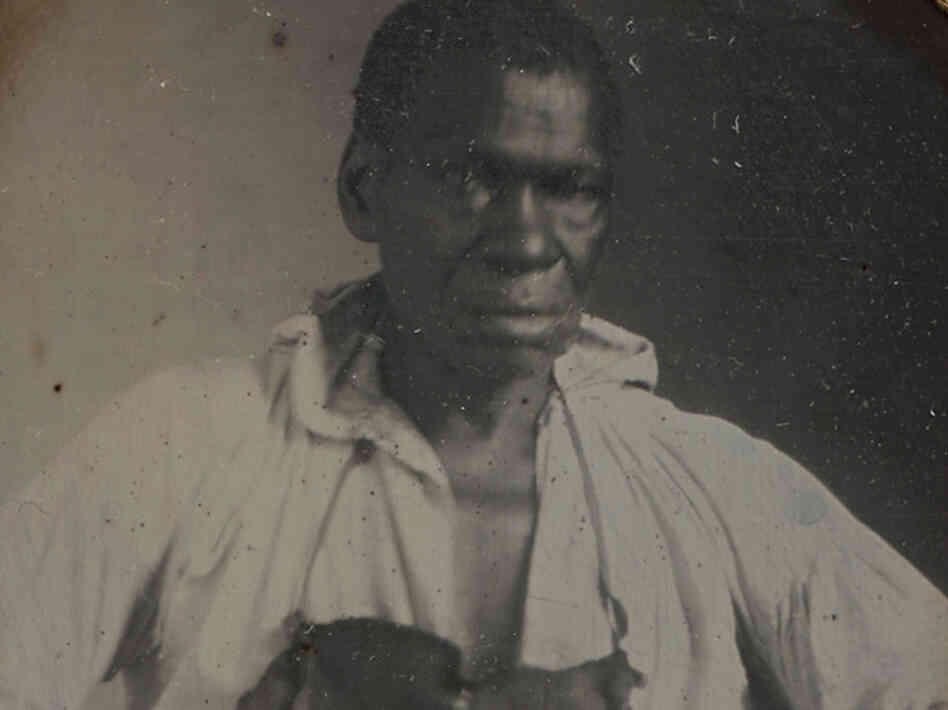 thomas jefferson and his slave dilemma Ed by john milton cooper jr and thomas j knock  annette gordon-reed  traces jefferson's record as a slaveholder alongside that of fellow.