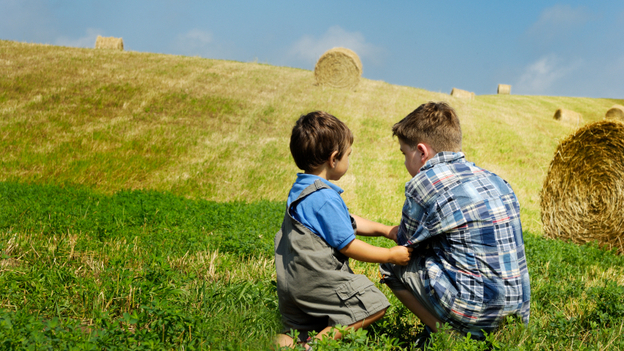 Most farm injuries come when children are playing or visiting, not working. (iStockPhoto.com)