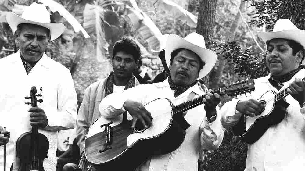 Violinist Heliodoro Copado (left) of the trio Los Camperos de Valles is considered among the best musicians of the son huesteco style.
