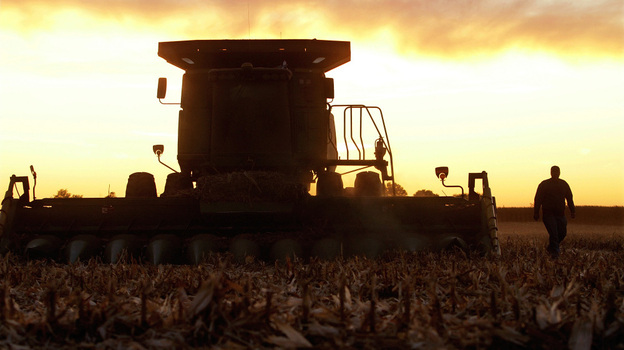 An Illinois farmer checks the blades on his combine while harvesting corn last October. The value of the 2011 U.S. corn crop was more than $76 billion. (AP)