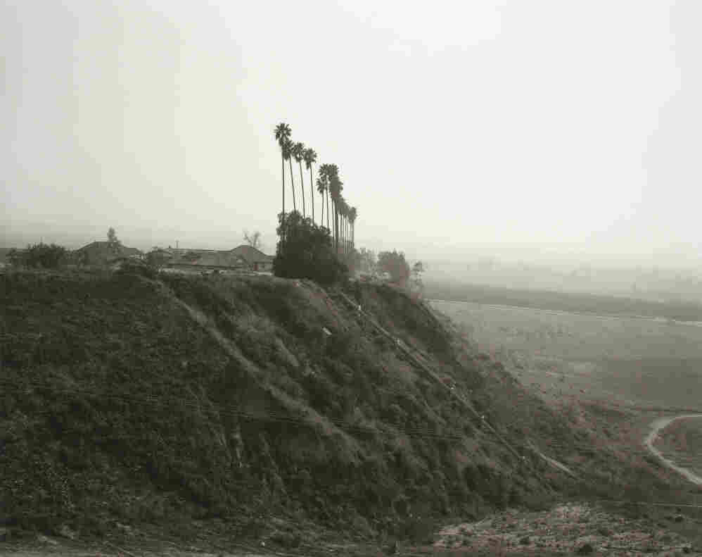 New development on a former citrus-growing estate, Highland, California, 1983