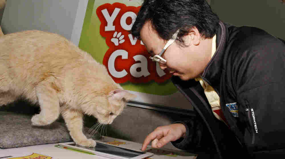 "In this photograph taken by AP images for Friskies, Ben Huh, of I Can Haz Cheezburger, challenges topcat gamer Buddy to a match of Friskies ""You vs. Cat"" during the SXSW Interactive Festival on Sunday, Mar. 11, 2012."