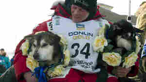 25-Year-Old Sets Record As Iditarod's Youngest Winner