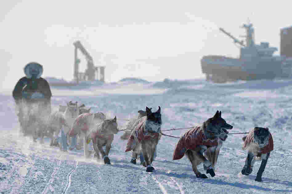 Peter Kaiser drives his team into the checkpoint in Unalakleet, Alaska, on Sunday.