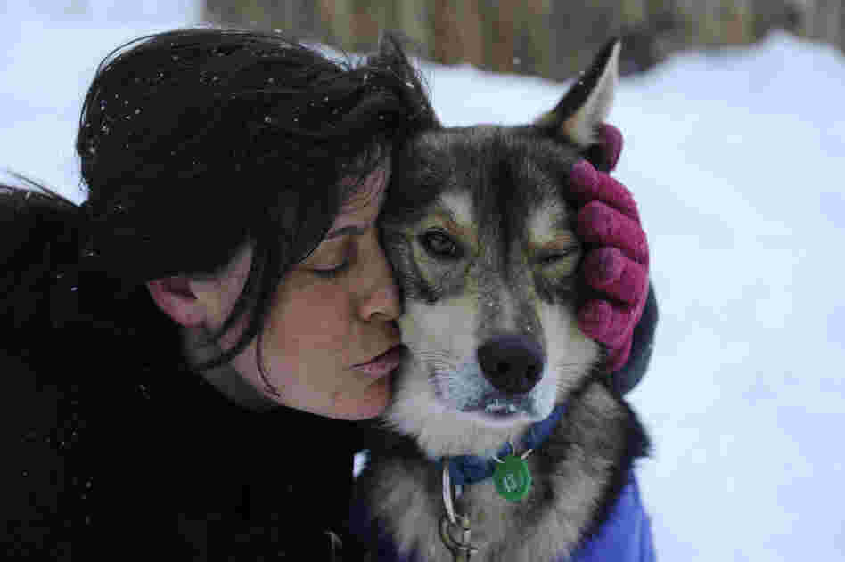 Karin Hendrickson hugs her leader, Hatchet, in Takotna, Alaska, on March 8.
