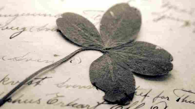 clover detail