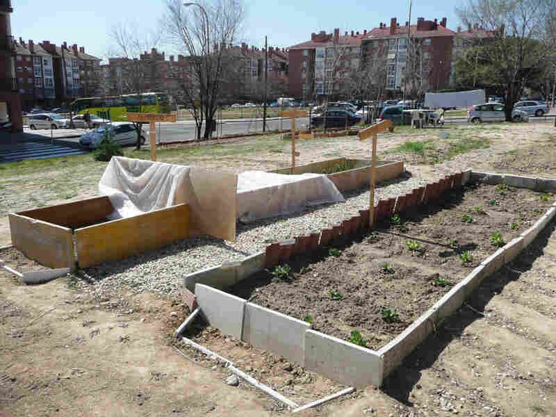 This urban garden was started by a group of neighbors on land that was cleared for construction during Spain's housing bubble but never built upon. The garden began in November 2011 and is tended to by volunteers who live in the neighborhood.