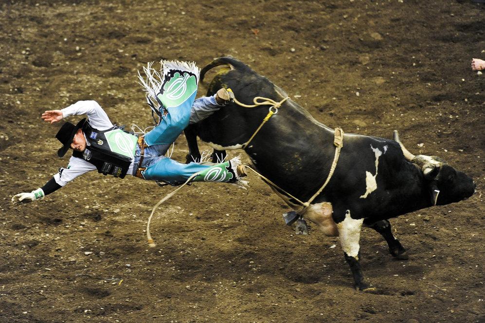 The Rodeo Circuit Bucking Bulls And Broken Bones Ideastream