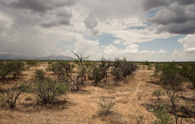 Thousands of people try to cross the desert from Mexico into the United States every year.