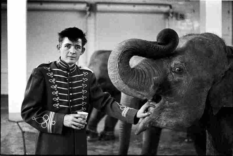 Elephant boy, circus, Atlanta, Ga., 1968