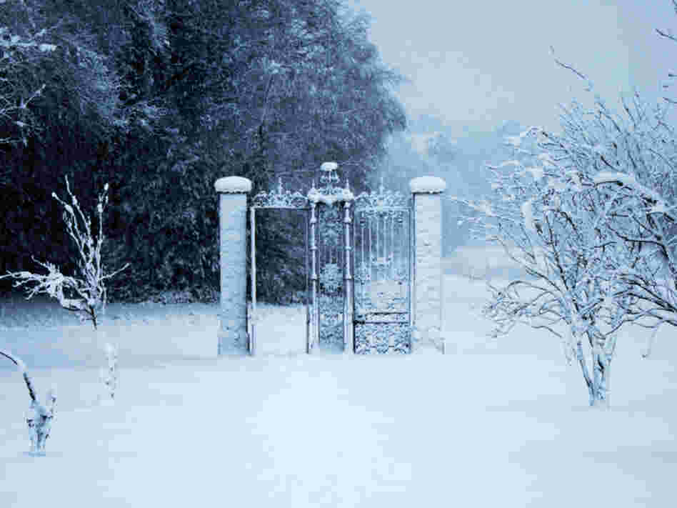 A gate to another world