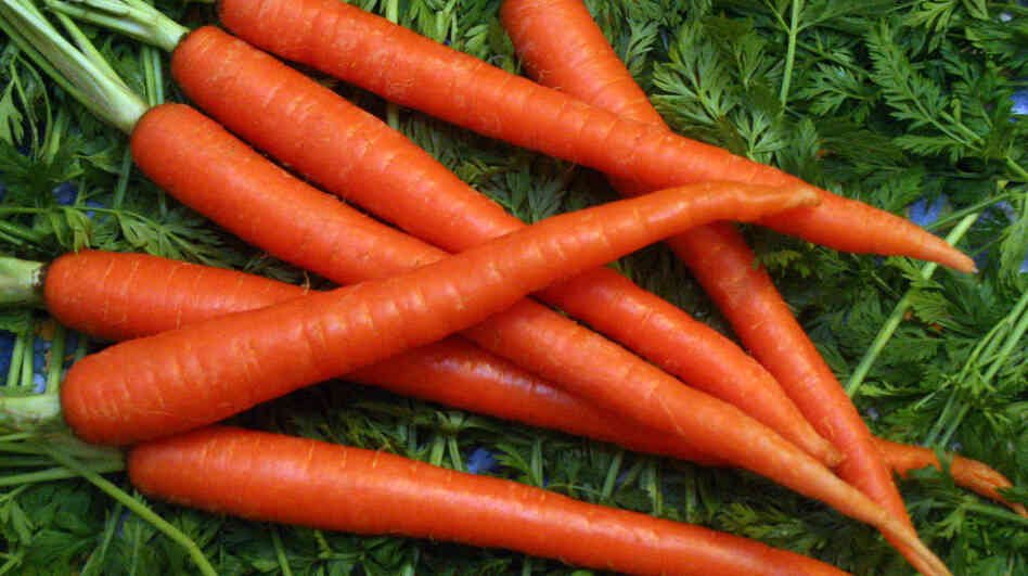 Carrots  Beyond The Re...