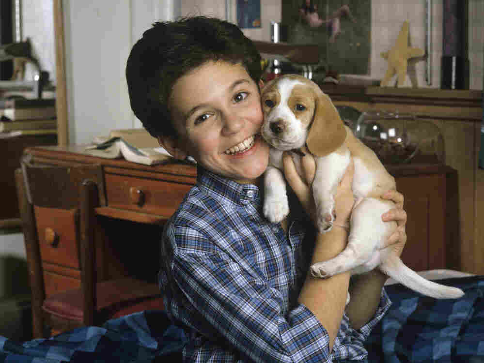 The face you may remember: Fred Savage cuddles up with a puppy on The Wonder Years, in a photo from December 1989.